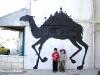sam3_camel