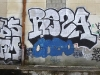 148_Reza(FDS,OFM)_Montpellier_2005