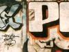 50_Roya(3DS,VFF)+Pyer(3DS,VFF)_Metz_2002