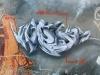 072_Webs(SP)_Brest_2001