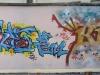 090_Skofe(VPN)+Koala91(LCF)+Bref(TPK)+Corail_Lyon_2004