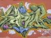 091_Serval(TZP)_Lyon_2004