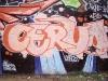 170_Cervo(WS3)_Troyes_2004