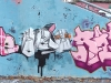 340_Buse(PC,UT)+Geb(KMK)+Roya(PC,VFF,IC)_Toulouse_2005
