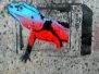 Stencils - Galway, Ireland