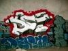 DSC Crew