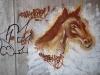 horse-graffiti10