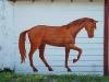 horse-street-art2