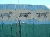 horse-street-art25