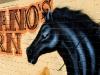 street-horse18