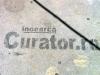 curator.ro