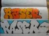 Raser