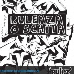 Concurs - RULEAZA O SCHITA